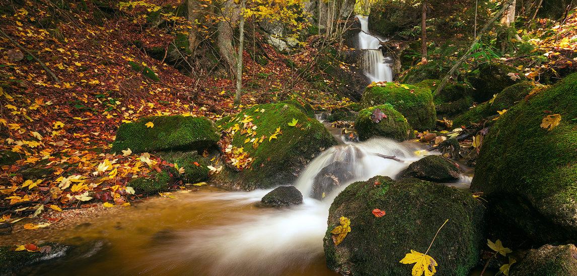 photograph charming waterfalls